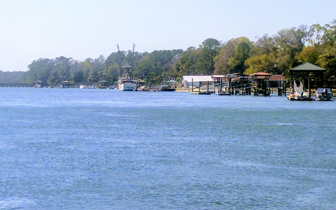 Bluffton, SC, A Look at the Town We Started In